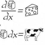 Vaca, leche y queso