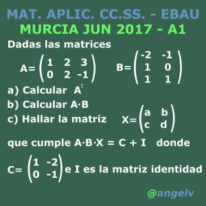 Mat. Aplic. CC.SS. Murcia 2017 Junio A1 Matrices