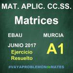 Ejercicio de Matrices - EBAU Murcia 2017 Junio Matemáticas Aplicadas CC.SS. A1
