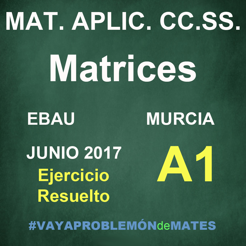 Ejercicio de Matrices – EBAU Murcia 2017 Junio Matemáticas Aplicadas CC.SS. A1